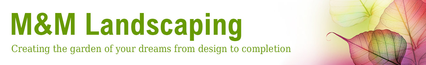 M & M Landscaping Ltd